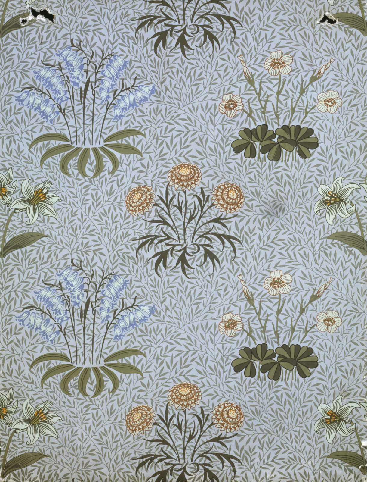 William Morris.  Fourrés de printemps