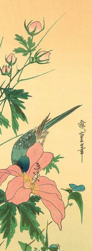 Utagawa Hiroshige. Blue bird drinking from a Bud of Chinese hibiscus