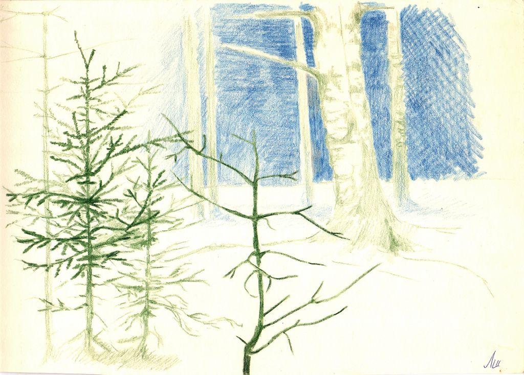 Larissa Alexandrovna Shilova. Winter forest
