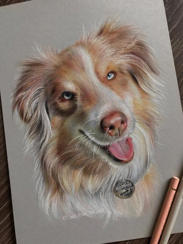 Elena Tkachenko. Dog