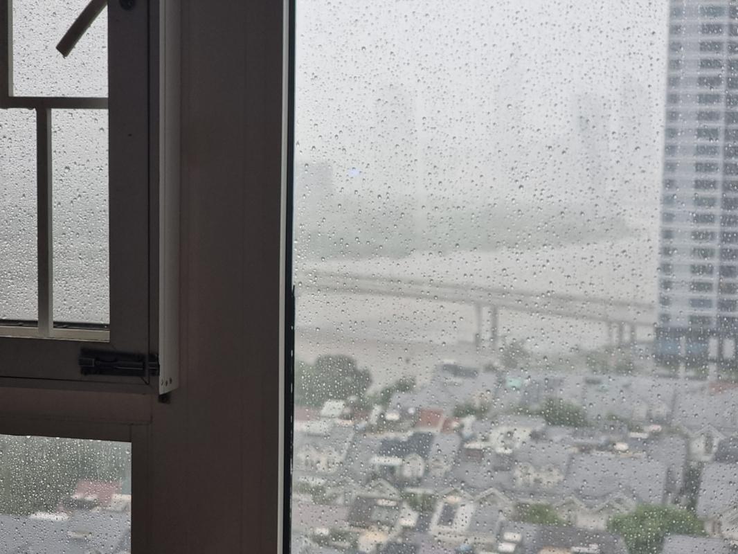 Hoang Viet. Rain in Saigon