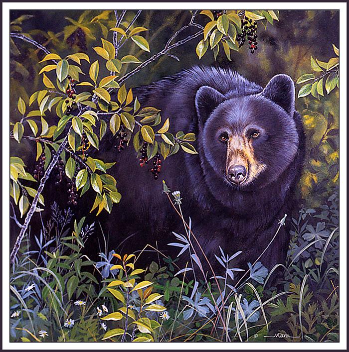Мишель Мара. Медведь