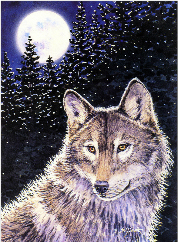 Салли Дж. Смит. Она волчица