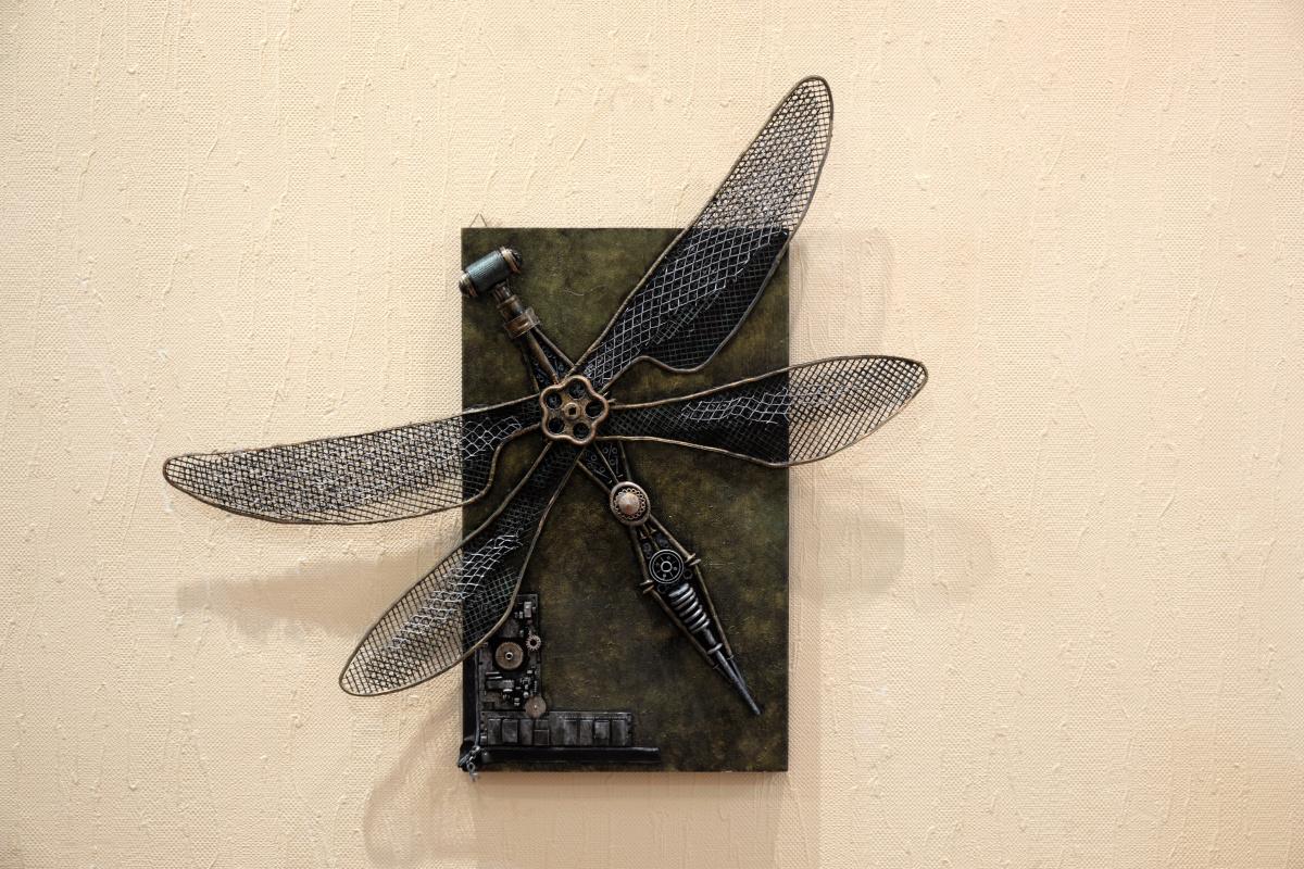 Alina yanovna balandina. Dragonfly