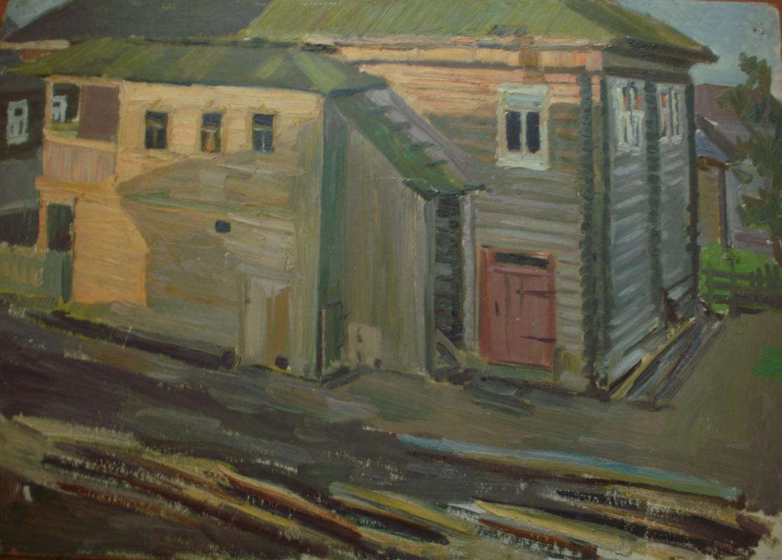 Nina Vasilievna Sedova. North House