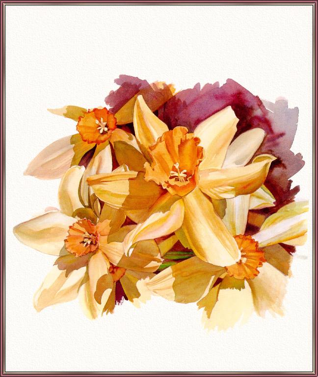 Jan Kunz. Daffodils