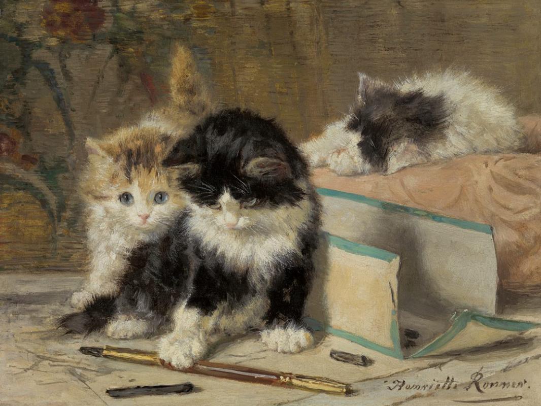 Генриетта Роннер-Книп. Игривые котята