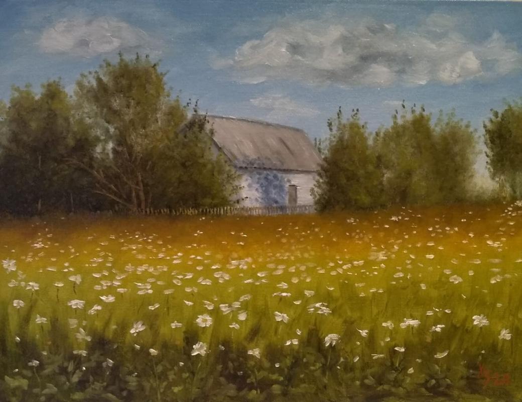 Sergei Nikolayevich Khodorenko-Zatonsky. Country sketch