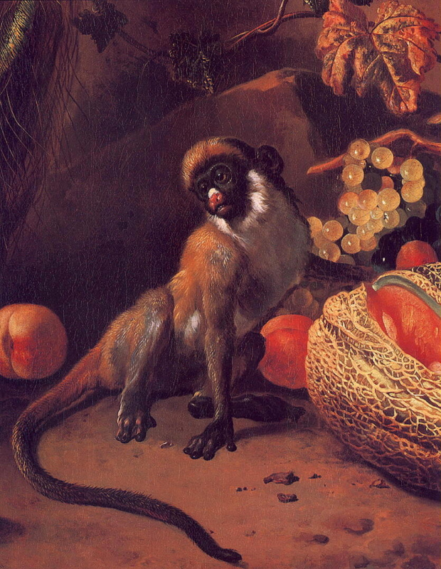 Melchior de Hondecuiter. Monkey and trucy
