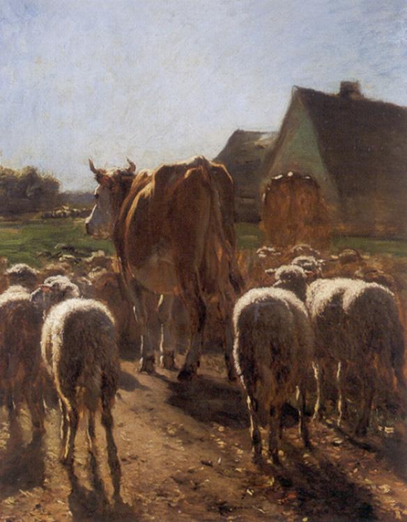 Антоний Тронкет. Возвращение стада
