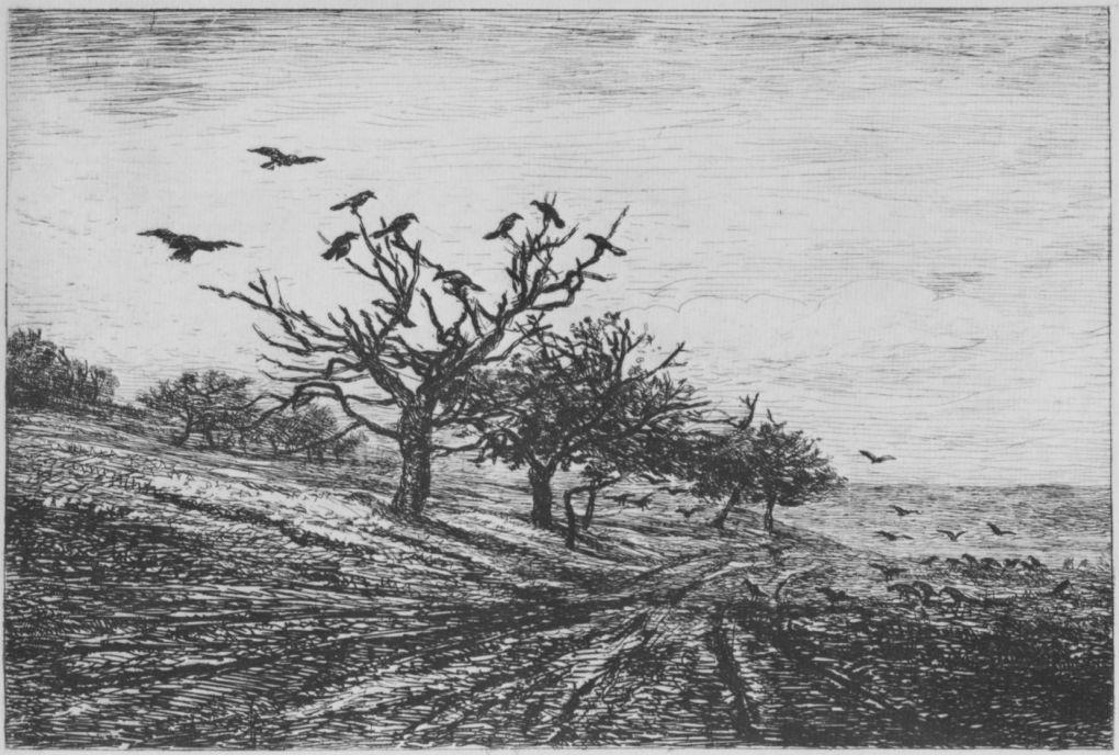 Шарль-Франсуа Добиньи. Дерево с воронами