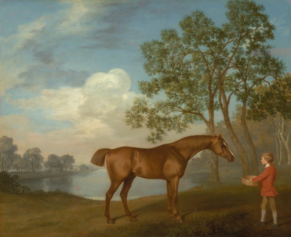 George Stubbs. A horse named Pumpkin and groom