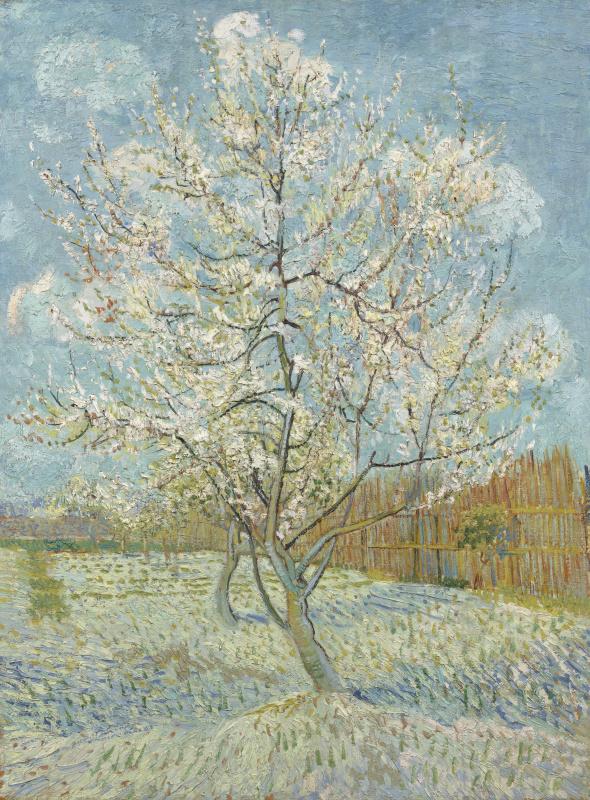 Vincent van Gogh. Peach tree in bloom