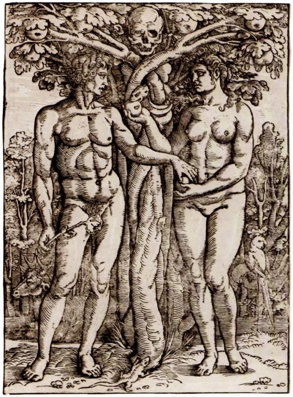 Ханс Зебальд Бехам. Адам и Ева