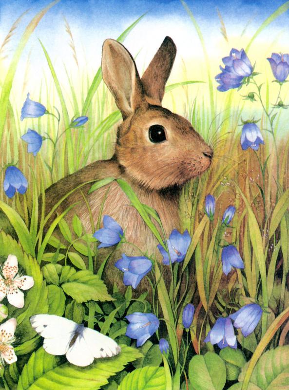 Валери Грили. Кролик в цветах