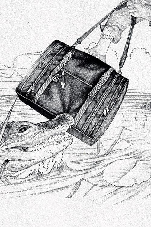 Гарри Дэвис. Крокодил