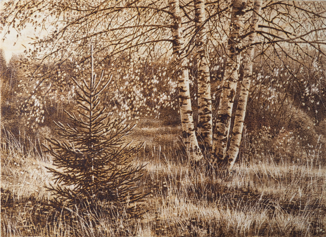Nadezhda Anatolyevna Krylova. Birch trees