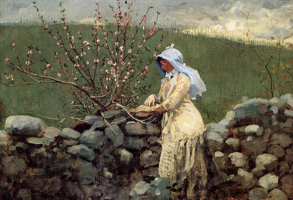 Winslow Homer. The peach blossom