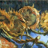 Four sunflower