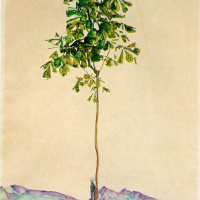 Egon Schiele. Small chestnut tree at lake Constance