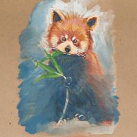 Евгения Брайд. Красная панда
