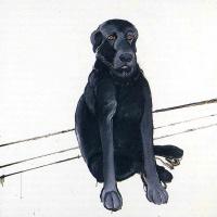 Джон Джордж Браун. Черный пес
