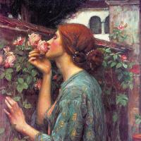 Джон Уильям Уотерхаус. Моя сладкая роза