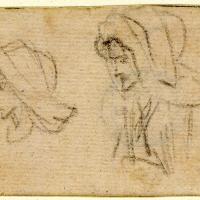 Дважды нарисованная женская голова