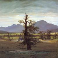 Пейзаж с одиноким деревом