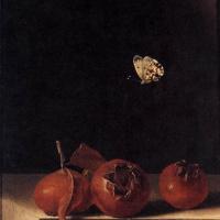 Адриан Коорт (Коорте). Натюрморт с тремя плодами мушмулы и бабочкой