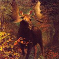 Альберт Бирштадт. Лось в лесу (Король леса)