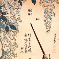 Кацусика Хокусай. Трясогузка и Глициния