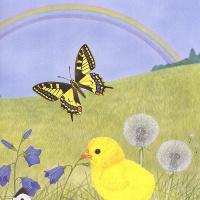 Морис Пледжер. Бабочка и цыпленок