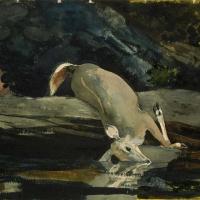 Winslow Homer. The fallen deer