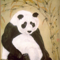 Джейн Эванс. Панда