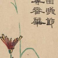 Утагава Хиросигэ. Дикие хризантемы