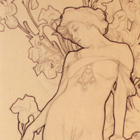 Iris. Sketch
