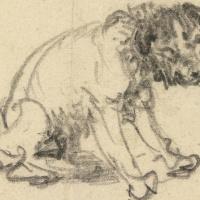Набросок собаки