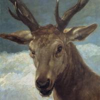 Diego Velazquez. Deer head