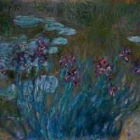 Ирисы и водяные лилии