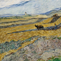 Винсент Ван Гог. Огороженное поле с пахарем