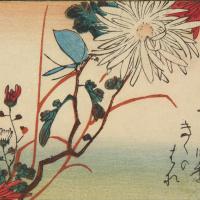 Утагава Хиросигэ. Бабочка и хризантема