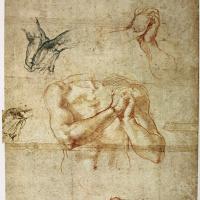 Микеланджело Буонарроти. Мужской торс со сжатыми руками и наброски рук