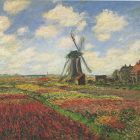 Field of tulips and windmill in Holland