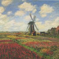 Поле тюльпанов и мельница в Голландии