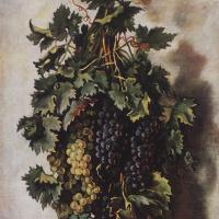 Зинаида Евгеньевна Серебрякова. Виноград