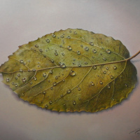 Evgeni (Евгений) Яковлевич Gordiets (Гордиец). Leaf with Water Drops