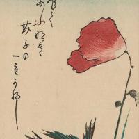 """Утагава Хиросигэ. Воробей и цветущий мак. Серия """"Птицы и цветы"""""""