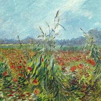 Винсент Ван Гог. Зеленые колосья пшеницы