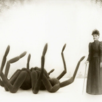 Miss Emily Fowler and her giant spider